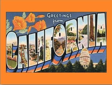 Poppies posies greetingsfromcaliforniapostcard p239144232330584111qibm400 m4hsunfo