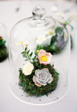 Glass Cloche Rentals NYC